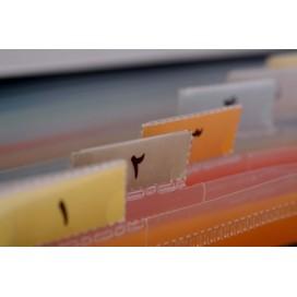 اکسپندینگ فایل رومیزی